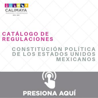 Constitución politica de mexico