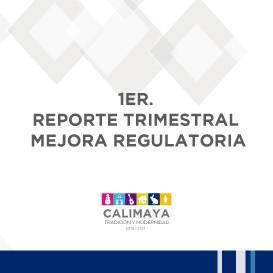 1ER REPORTE TRIM