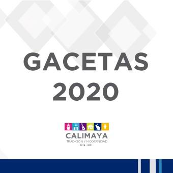 Gacetas 2020