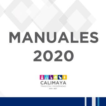 Manuales 2020