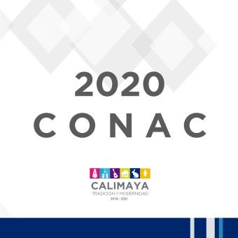 2020 AYUNTAMIENTO