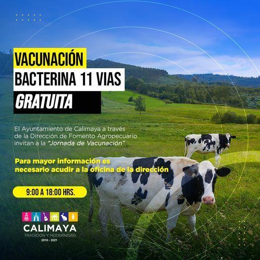 Jornada de vacunación bacterina 11 vias